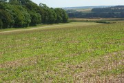 Farmland, Stratton