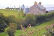Marian-bach farm near Cwm