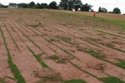 Turf crop removed