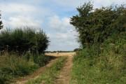 Track into harvested field near Saxthorpe