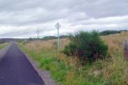 Power lines alongside road