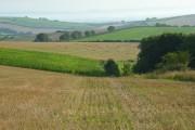 Farmland, Alton Pancras