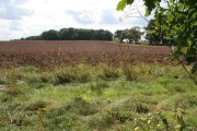 Farmland between High and Low Brecks Farms