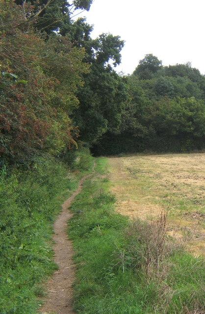 Field edge path towards woodland
