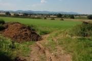 View across Eldersfield Marsh