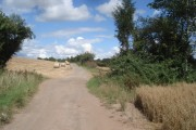 Track to Hutt Farm