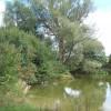 Large pond at Akenham