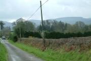 Woods surrounding Llanfechan