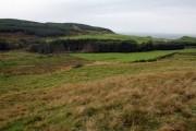 Farmland and Wood at High Lossit.