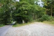 Middle Gwerneirin Wood