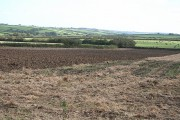 Warbstow: ploughed field