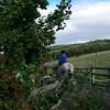 Clwyd Special Riding School, Llanfynydd