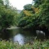 Bend in the river Derwent