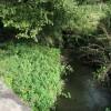 Chatcull Brook