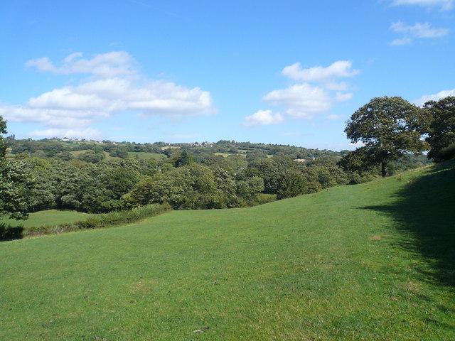 Millthorpe - Footpath View
