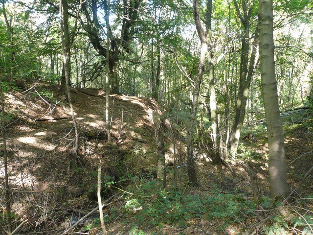 Pingle Dike in Meekfields Wood