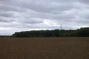 Pylon over Littley Wood East and Grove Spring