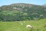 Farmland near Cefn Cyfanedd