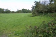 Field near Ufton Nervet
