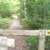 Footpath into Greatlee Wood