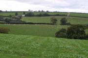 Fields near Petrockstowe