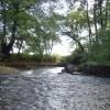 Bryngarw Country Park, Brynmenyn
