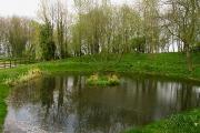 Farnborough Village Pond