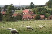Brantingham