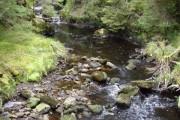 Allt Mor in Raven's Rock Gorge
