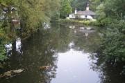 Basingstoke Canal near Frimley Green