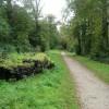Ridgeway in Tring Park