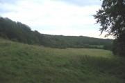 Looking towards Hale Woods
