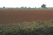 Freshly ploughed and harrowed