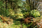 Path across Baslow Bar