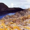 Lichen-covered rocks in Portskerra Harbour