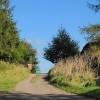 The lane towards Pilsley