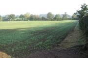 Farmland near Betton