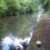 Grand Union Canal near Tring railway station