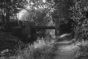 Heath Vale Bridge, Basingstoke Canal