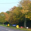 Lower Road