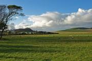 Ardneil Farm, Portencross