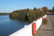 On Lemon Hill Bridge, Alton Water