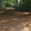 Copper carpet