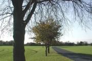 Burland Common