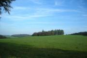Farmland near Lampeter
