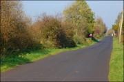 The Heagles Road near Ballybogey