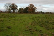 Farmland near Little London, Staunton on Wye