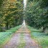Driveway to Warren Farm