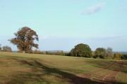 Crop Field near Loughton, Shropshire