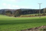 Shropshire Farmland near Loughton